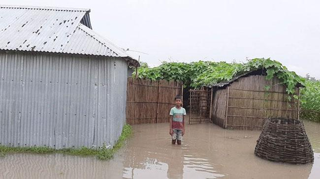 flood 2k20