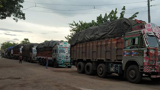 indian onion truck in border